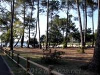 Playa de Sanguinet. Francia
